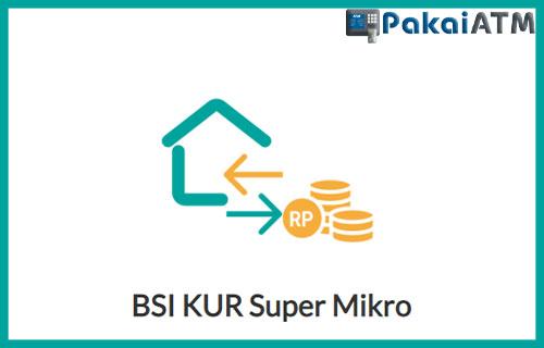 11. BSI KUR Super Mikro