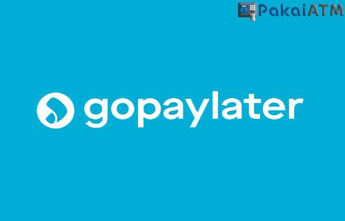 Apa Itu GoPayLater