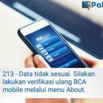BCA Mobile Error 213