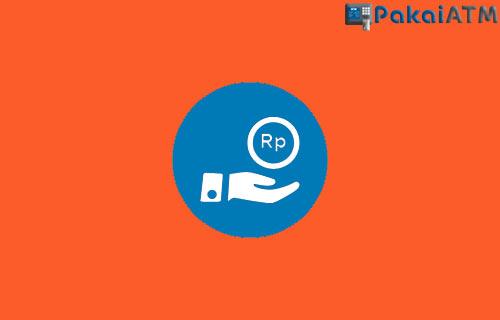 Biaya Admin Bayar Shopee PayLater Lewat DANA